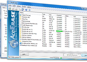 AceErase File Shredder History Eraser screenshot