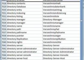 Dataprocessing Dictionary English German screenshot