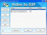 Video to GIF Animation Converter screenshot