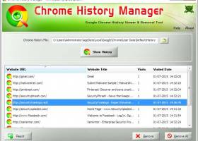 History Manager for Chrome screenshot