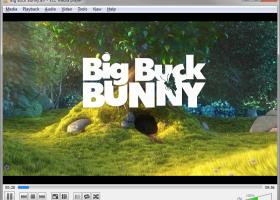 VLC Media Player Портативный скриншот
