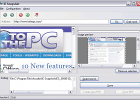 IE Snapshot screenshot