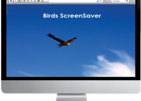 Birds Screensaver screenshot
