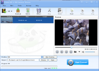 Lionsea AVI To DVD Converter Ultimate screenshot
