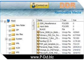 Data Recovery Removable Drive screenshot