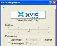XviD Media Codec screenshot