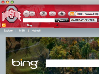 Ohio State Buckeyes IE Browser Theme screenshot