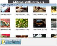 Digital Pictures Data Recovery screenshot
