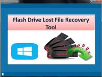 Flash Drive Lost File Recovery Tool screenshot