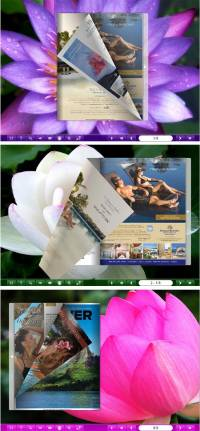Flipbook_Themes_Package_Classical_Lotus screenshot