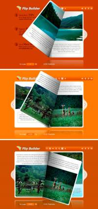 Flip_Themes_Package_Conciseness_Orange screenshot