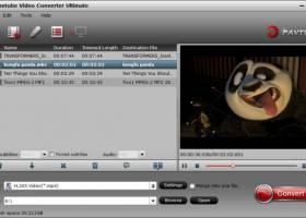 Pavtube Video Converter Ultimate screenshot