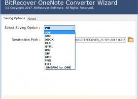 OneNote to PDF Converter screenshot