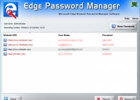 Password Manager for Microsoft Edge screenshot