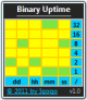 Binary Uptime