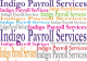 Payroll Services at Best & Brassier Cost